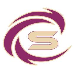 Logo Firma Sinprox